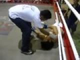 Brutal 5 Sec KO Muay Thai MMA Knockout
