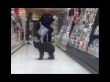 Bear Cub In Oregon Supermarket
