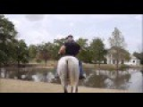 Bodybuilder On A Horse Gone Wrong