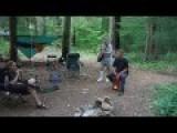 Bat Attacks Campers