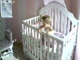 Baby's Escape Attempt From Crib Ends In Fall