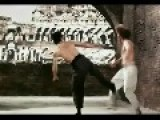 BRUCE LEE--V--CHUCK NORRIS