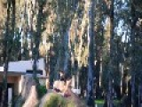 BMXer Doing Trick Off Dirt Jump Hurts Abdomen