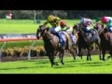 Blake Shinn In A 'cracking' Finish