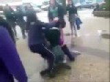 Chileans Cat Fights