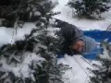 Christmas Tree Falls On Man