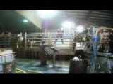 Cows Kicked, Beaten, And Hanged At Massive CANADIAN Dairy Factory Farm