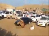 Camel Race Gone Wrong