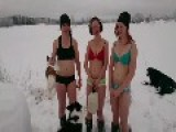 Cows Swedish Women Skis And Dogs Oh And Alcohol