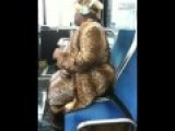 Crazy Person Wilding Out On The Bus