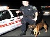 Cops Can't Hold Suspects To Wait For Drug-sniffing Dog : Supreme Court Rules