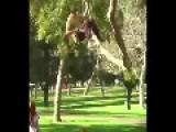 Crazy Creative Skateboarding