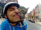 Cat Bike Guy - Philadelphia, PA
