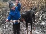 Cute Kid And Doggie