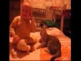 Cat Vs. Baby