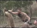 Conor Mcgregor Punches Kangaroo