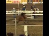 Cowboy Demolished At California Rodeo