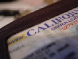 California Plans To Issue 1.4 Million Driver's Licenses To Illegal Immigrants…