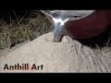 Casting A Fire Ant Colony With Molten Aluminum Cast #043