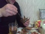 Crazy Man Eats Crayfish's Caviar While It's Still Alive And Moving