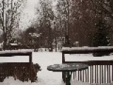 Captivating Time-Lapse Shows Gradual Build Up Of Snow
