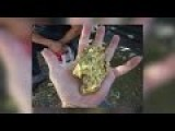 Central Valley Man Finds Palm Sized Gold Nugget