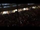 Crazy Fan Jumps Off Light Post