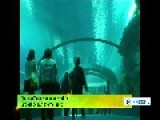 China Officially Opens World's Largest Ocean Theme Park