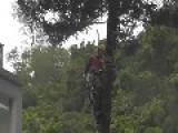 Close Call - Hong Kong Tree Cutting Accident