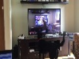 Dog Loves To Watch Herself On TV