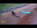 Dog Thinks Kid Is Drowning. Rescues Kid From Fun
