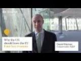 Daniel Hannan - Four Reasons I Want You To Sack Me
