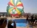 Donkey Sailing Downwind With Parachute