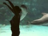 Dolphin Is Really Entertained By This Woman's Gymnastics