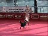 Dogdance Freestyle - Sandra & Lizz
