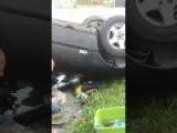 Drunk Fool Flips Car