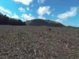 Drone Vs Hawk