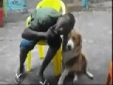 Dog Bite A Black Man In His Face
