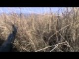Debaltsevo Raw Footage