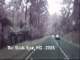 Dashcam Captures Crazy Wind With Trees Falling *volume*