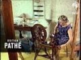 Dog's Wool 1966
