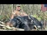 Dentist Smiles Over Illegal Bear Kill In New Photos