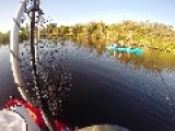 Dolphins Eat Kayakers Fish