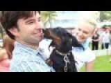 Dachshund Lovers Come Out For South Beach Dachshund Winterfest 2015