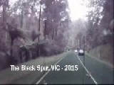 Dashcam: Godzilla In Australia?