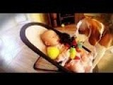 DOG BURIES BABY ALIVE -- BABY UNHARMED