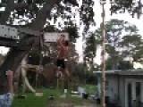 Experience A Ninja Warrior Obstacle Course From The Backyard
