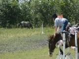 Equestrian Rider Falls Off Horse