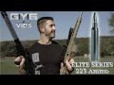 ELITE SERIES 223 Ammo -vs- Windshield MEAT Concrete Wood