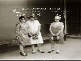 Encore Mug-shots 1880s To 1930s Sydney Australia # 3